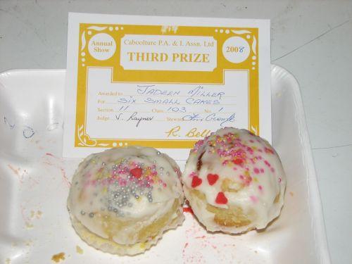 J9's Prize Winning Cupcakes