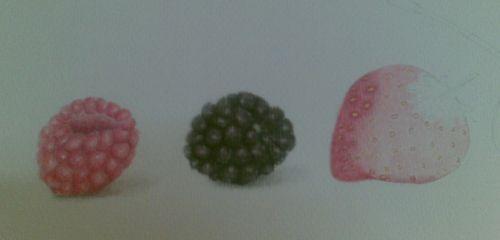 Berries - WIP